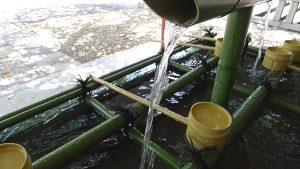 画像 日枝神社の手水舎